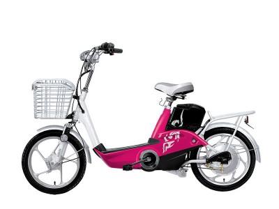xe đạp điện H10