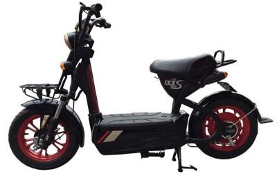 Xe đạp điện m133s nhập khẩu